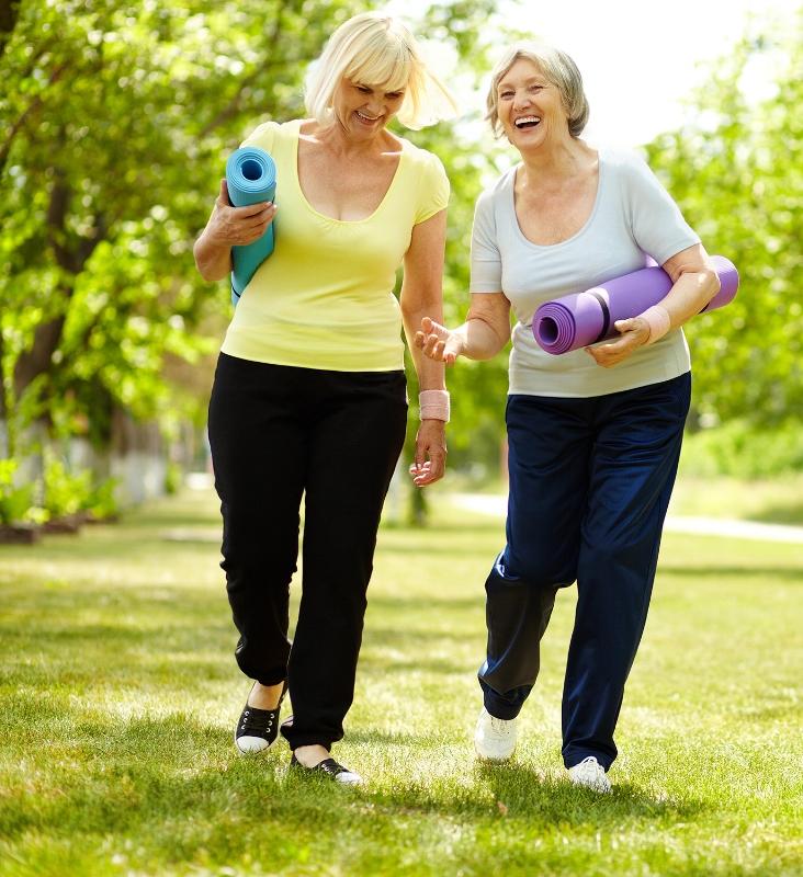 shutterstock_106573217_walking ladies.jpg