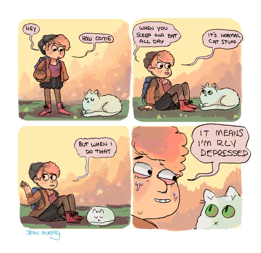 catt.png
