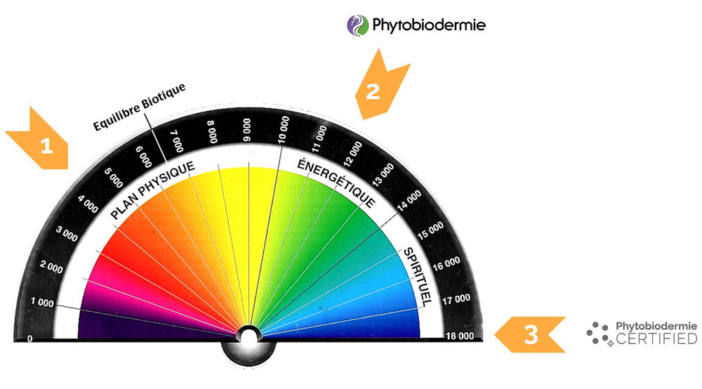 Phytobiodermie_Bovis_Scale.jpeg
