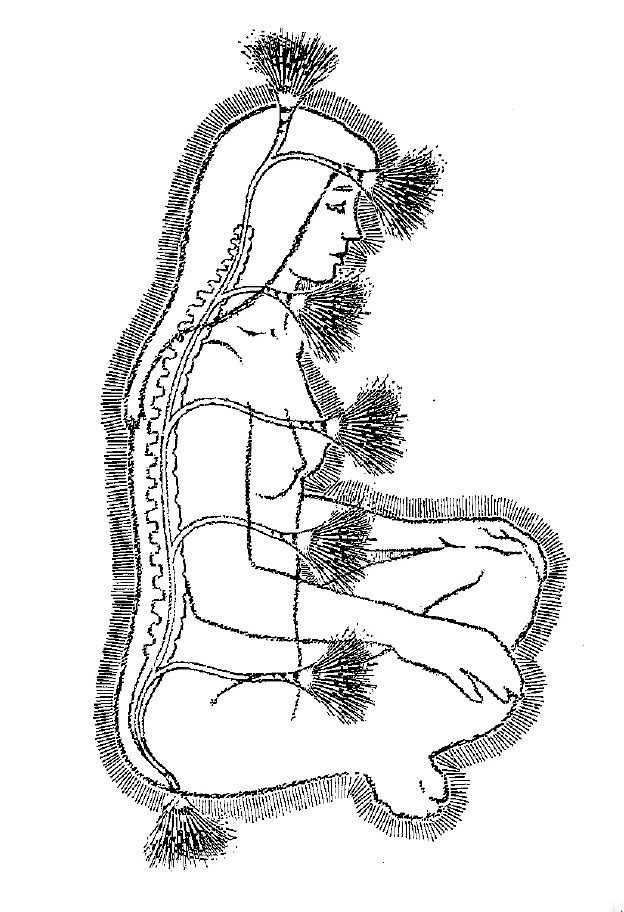 Illustration Credit:  The Chakra Handbook by Shalila Sharamon and Bodo J. Baginski