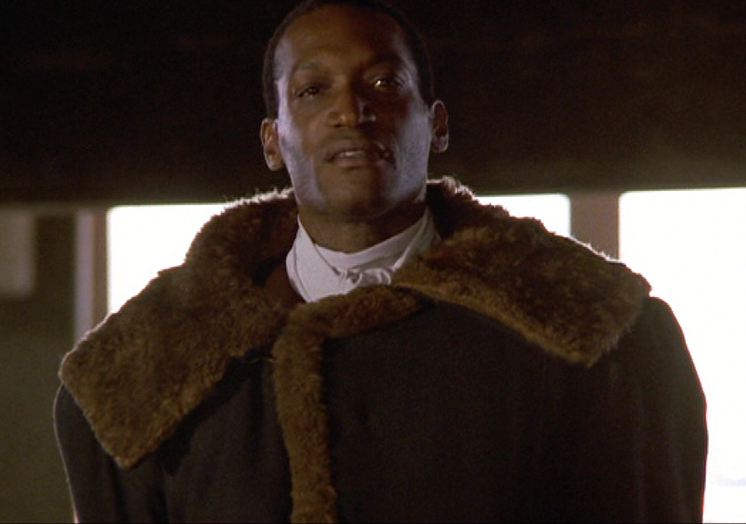 Tony Todd as Candyman