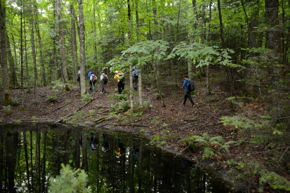 OUTDOOR EDUCATION  /  חינוך בשטח - Nature hikes, canoe and hiking trips, cookouts, Jewish ecology, challenge course and campfires.Click here to read how Camp Ramah in Wisconsin respects and protects the environment.