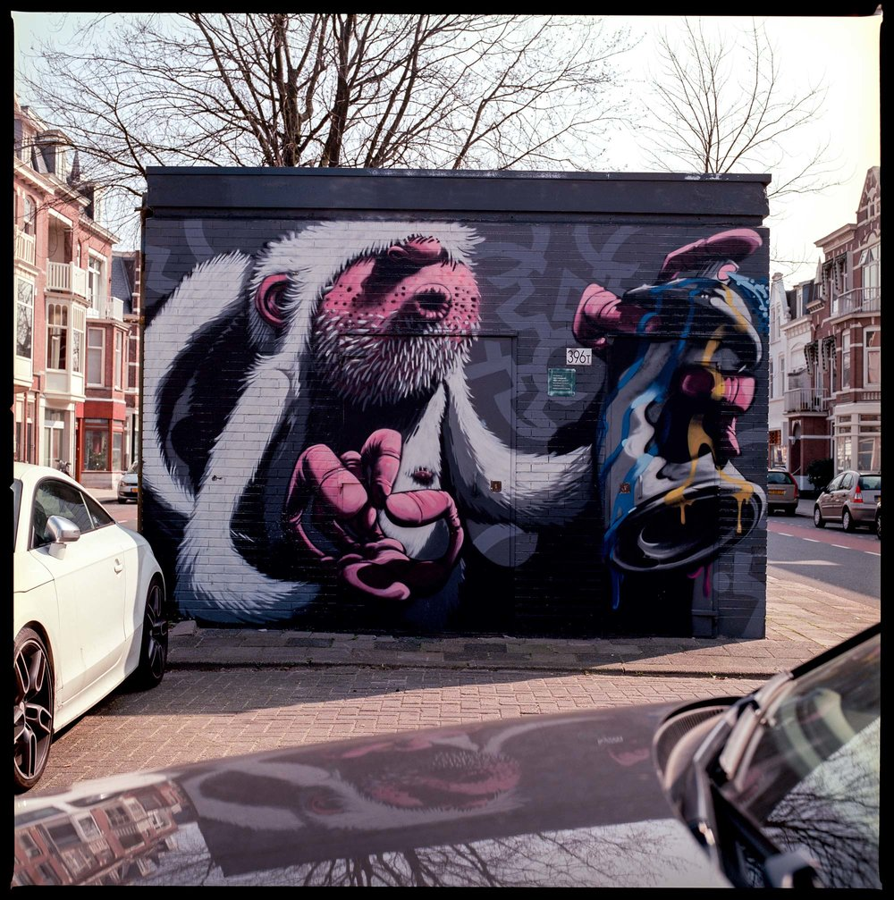 Wall Art The Hague
