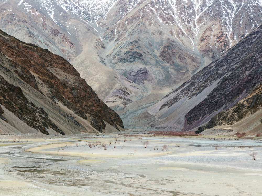 "Nubra Valley  | 36""x48"""