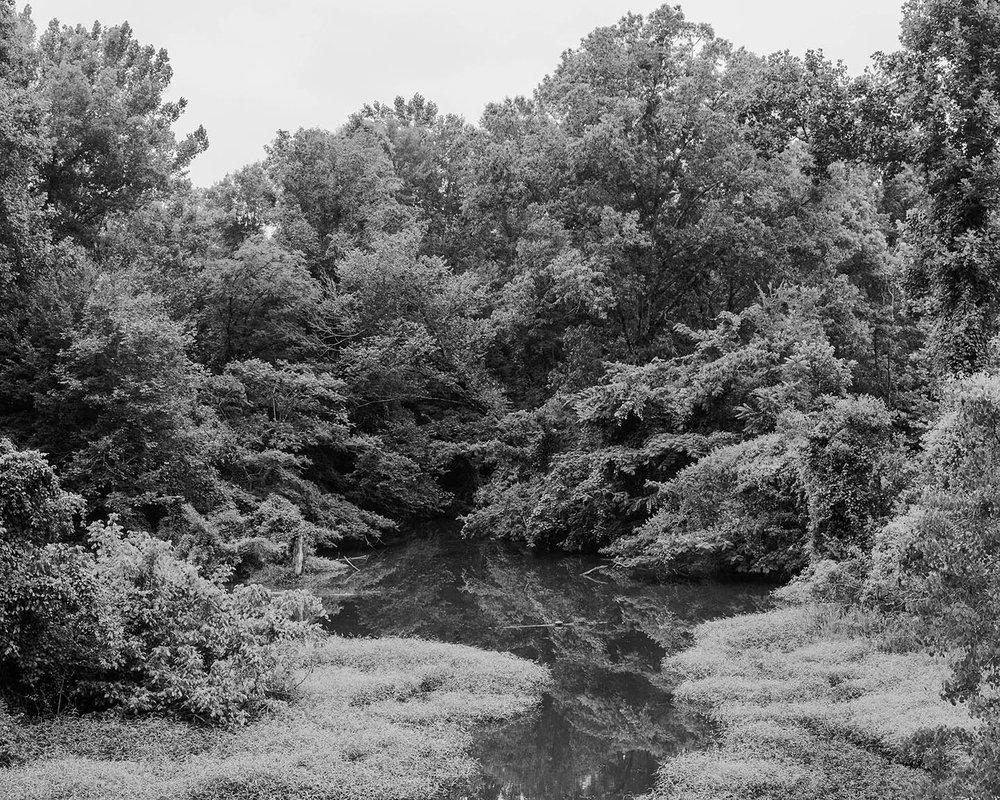 "Near Vicksburg | 16""x20"""