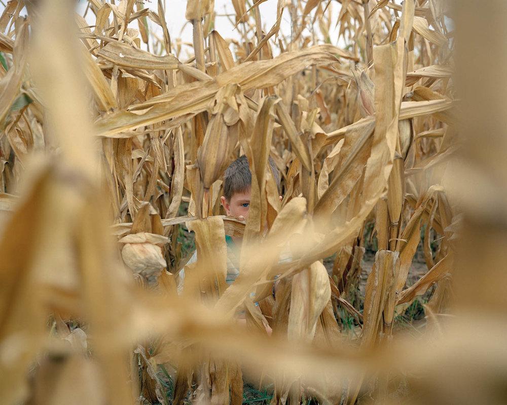 John in a Cornfield.jpg
