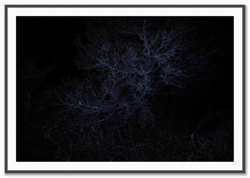Constellations_Mat_Dusk.jpg