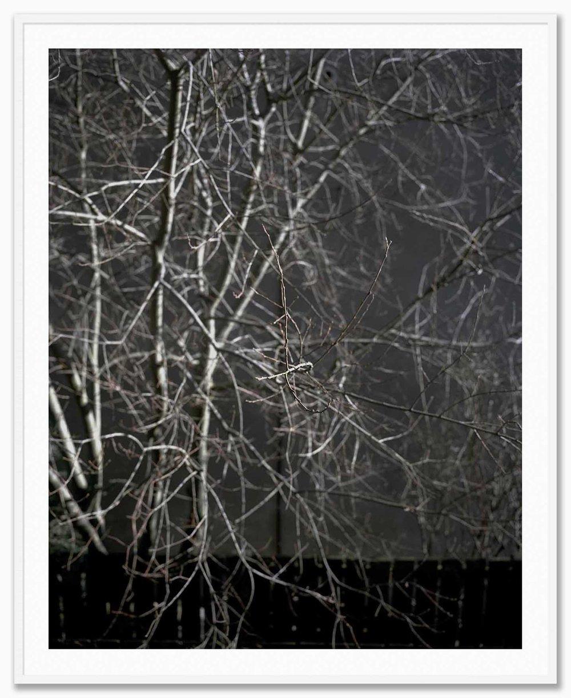 U1_Mat_White.jpg