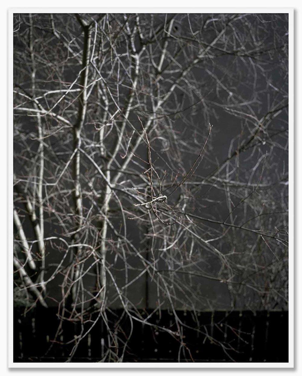 U1_NoMat_White.jpg