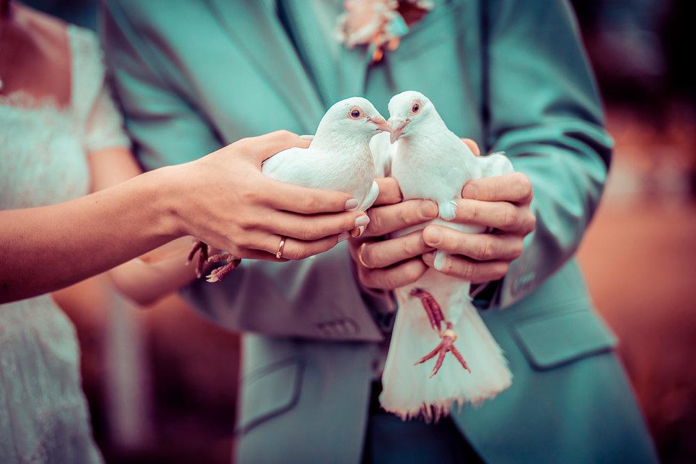 weddingexpo.jpg