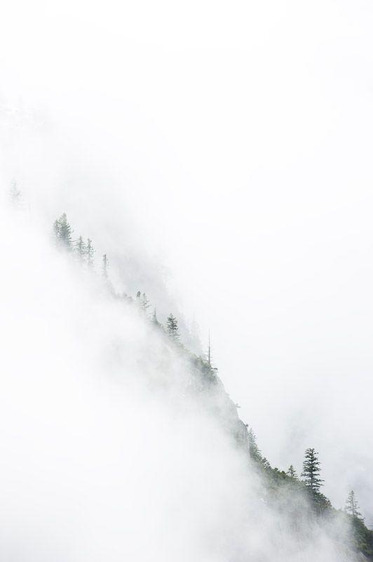 janvier14.jpg