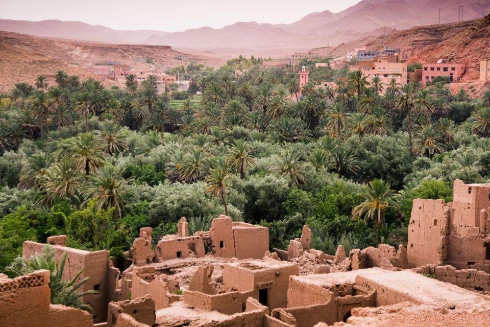 oasis todgha.jpg
