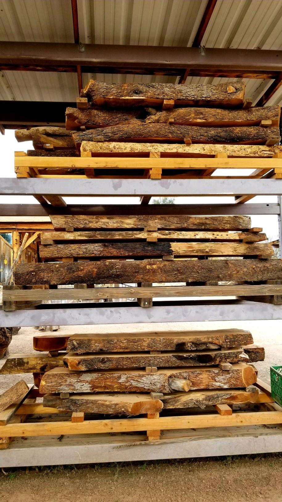 Mesquite mantel candidates (rough cut, unfinished)