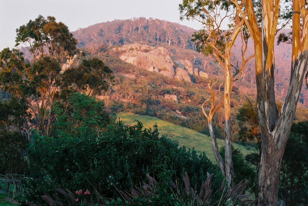 Gulaga (Mount Dromedary)