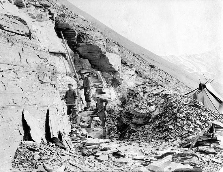 Doolittle Walcott and family in the Burgess Shale, 1915