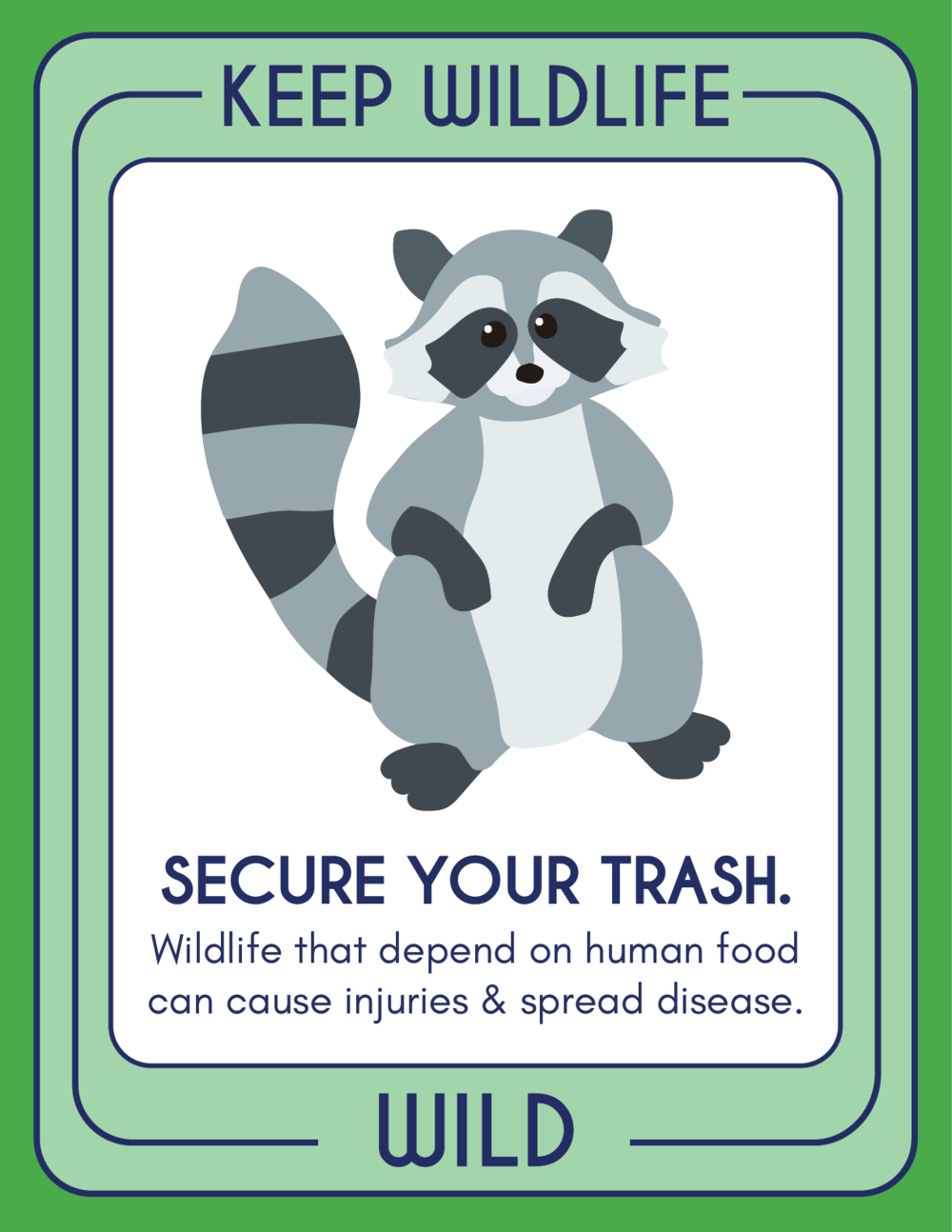 RACCOON Poster.png