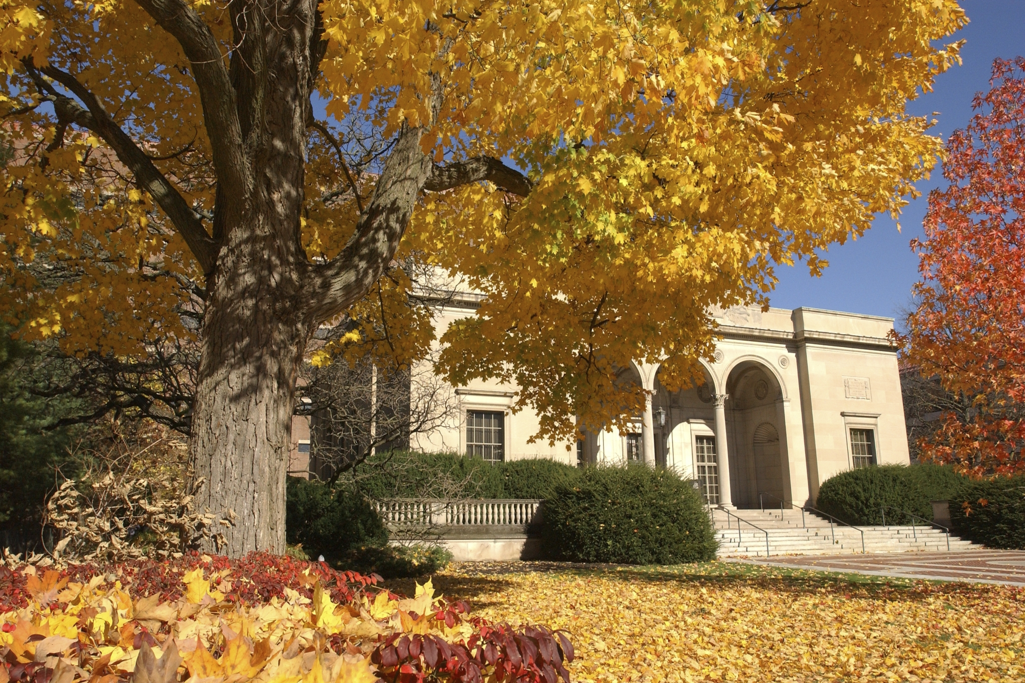 clements-library-fall.jpg