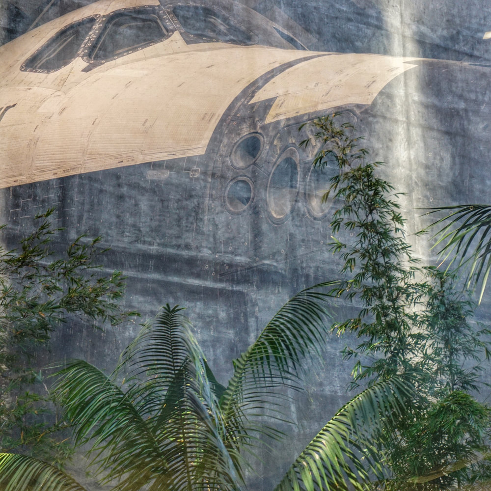 Jurassic Parked