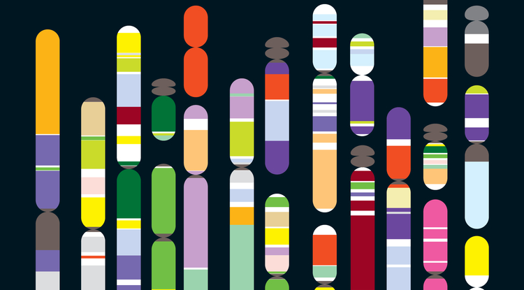 SCI1220 GenomicsNow PR Graphic.jpg