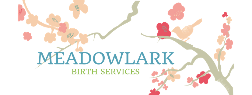 Meadowlark Birth Services