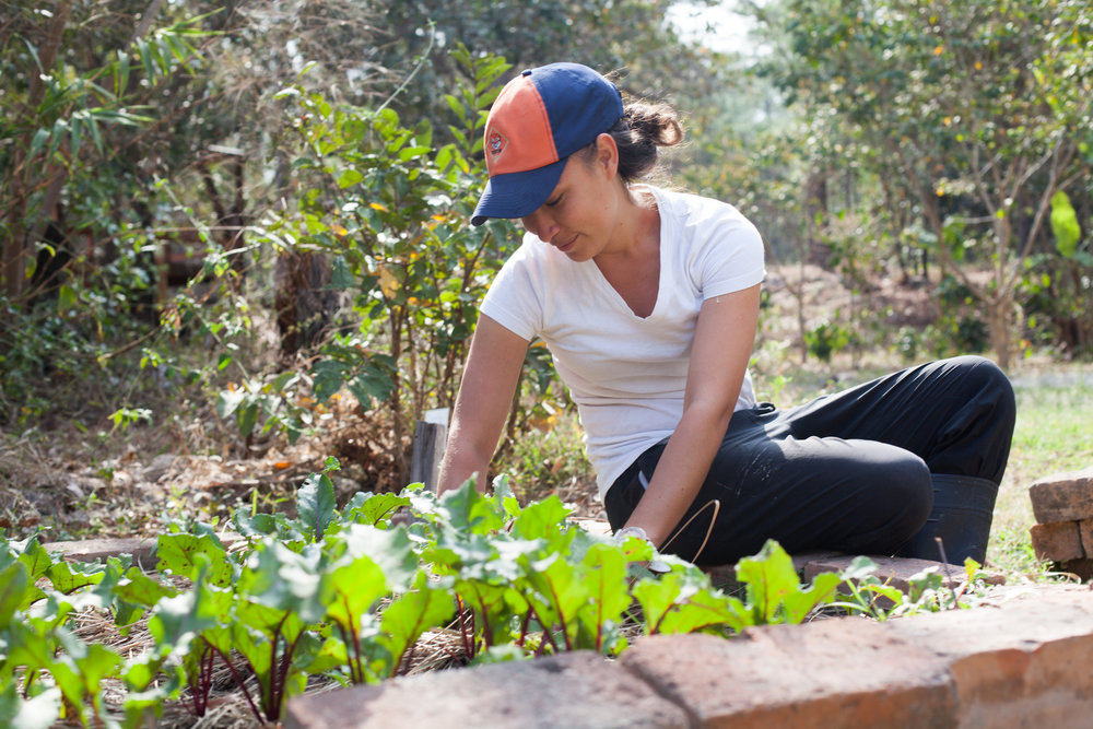 VEGETABLE PRODUCTION - Our campus has 30 vegetable gardens that are cared for and harvested by our students year-round. Prime crops include beets, carrots and beans.