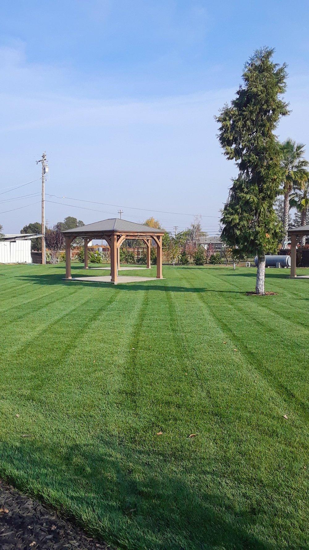 Lawn Mowing Modesto CA