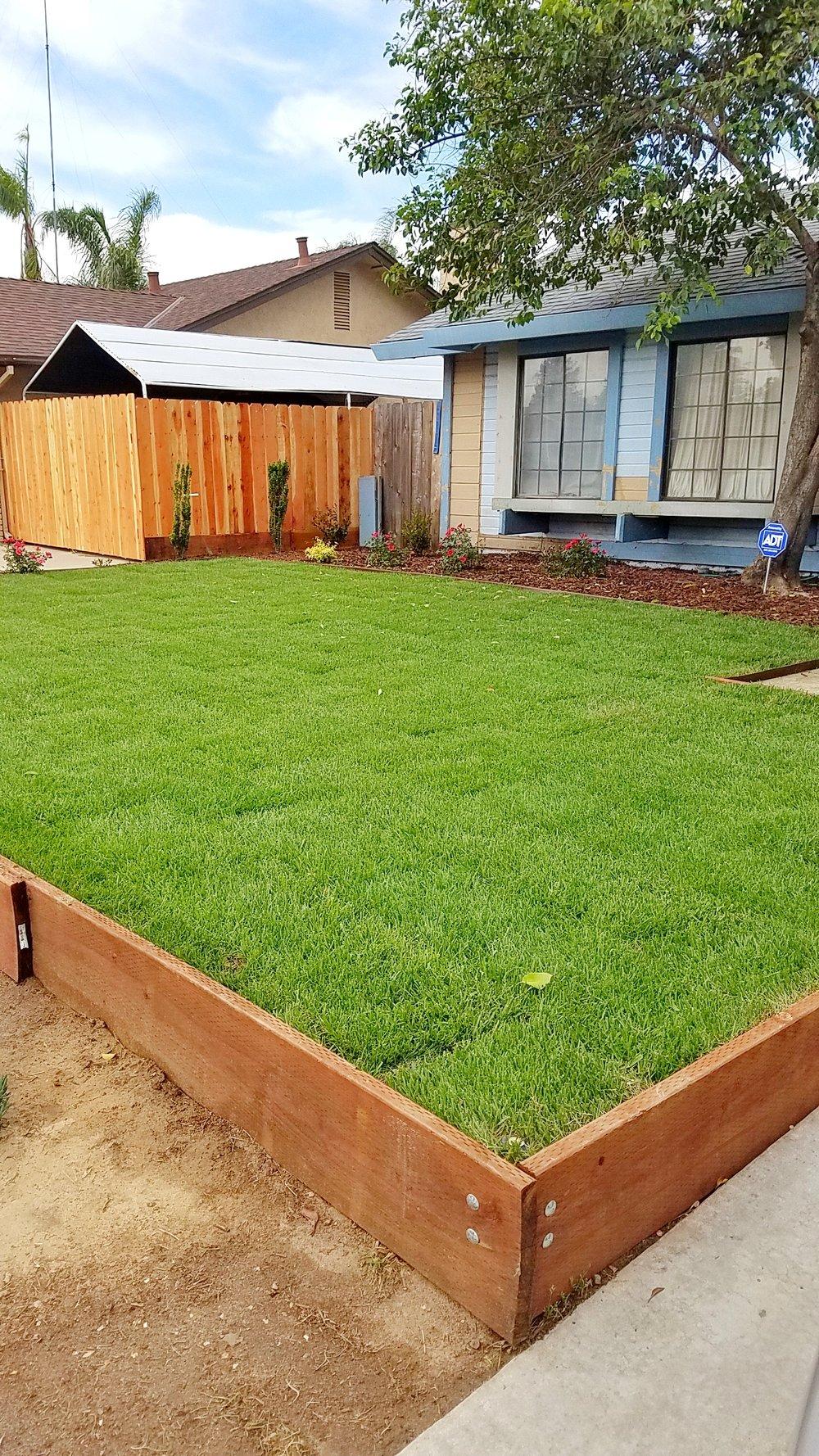 Sod installation landscaping modesto CA