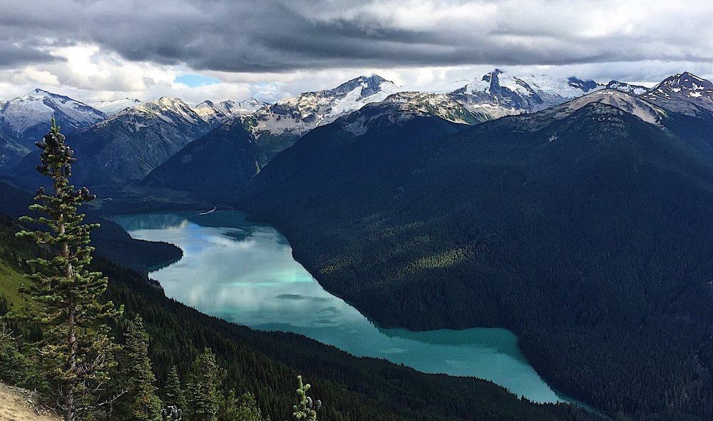 The breathtaking view of Cheakamus Lake from Whistler Mountain (High Note Trail, to be exact)