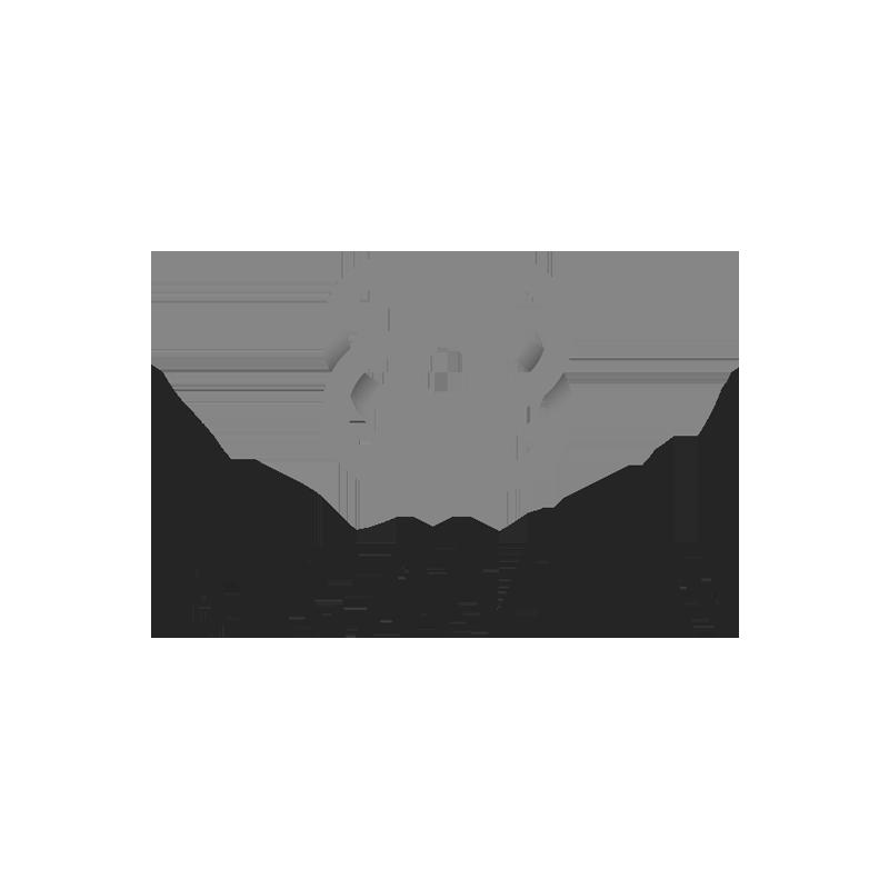 2018.06.07.WebsiteLogos.Braven.png