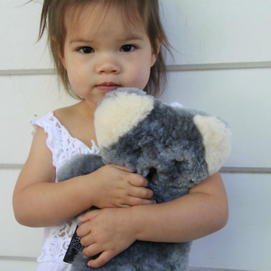 koala-LS.jpg