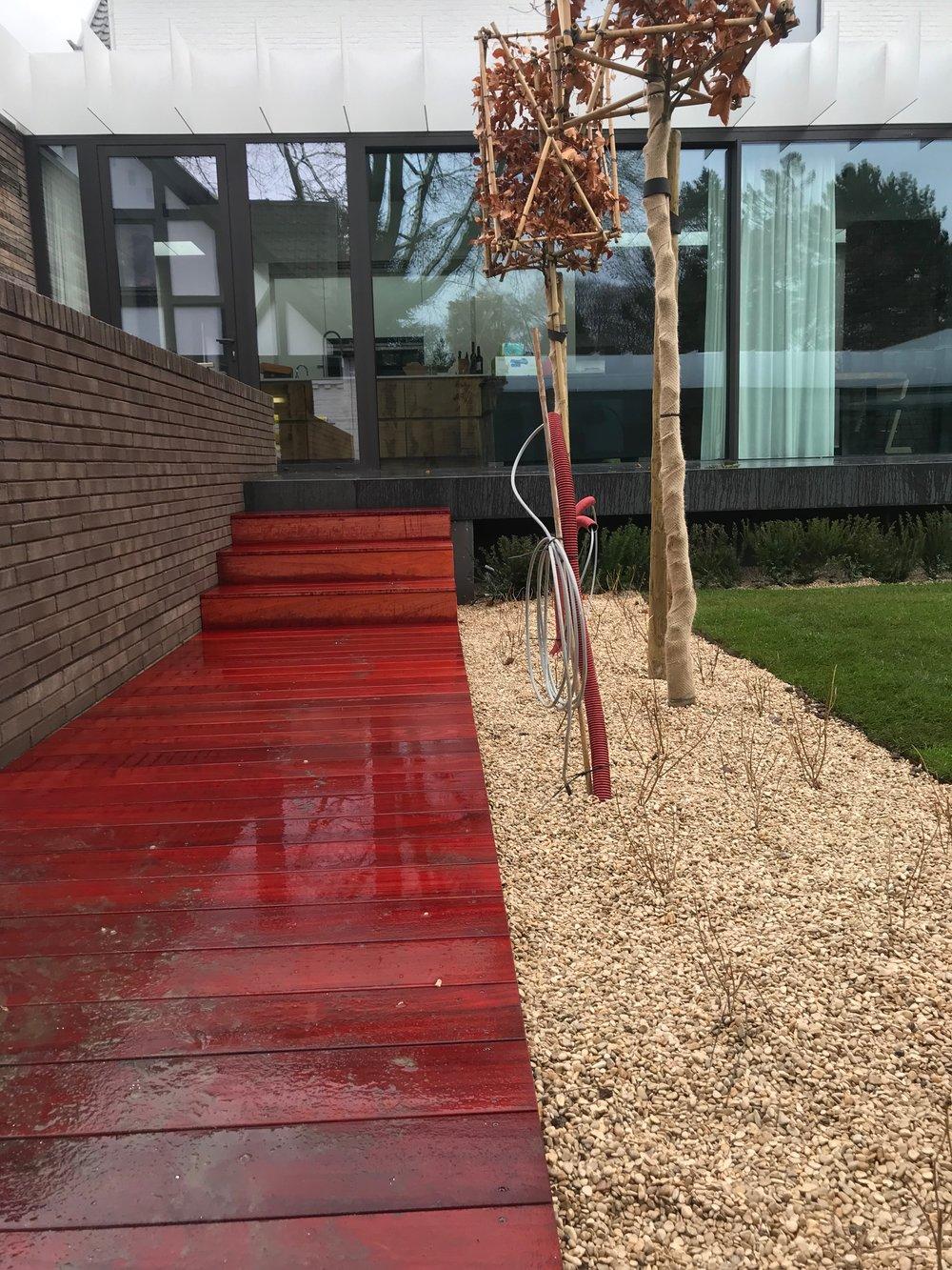 Myproject   tuinpad padoek blokboom fagus.jpg
