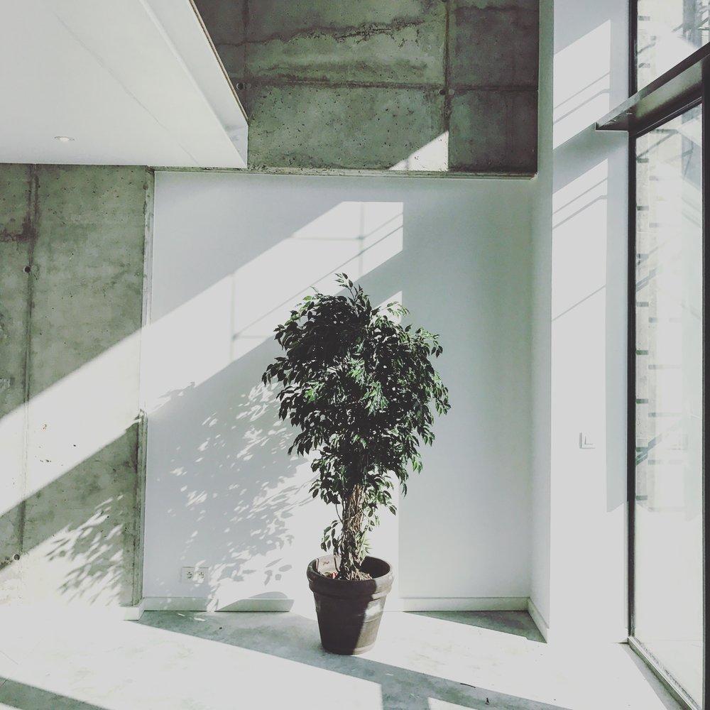 Myproject | kantoorruimte modern.jpg