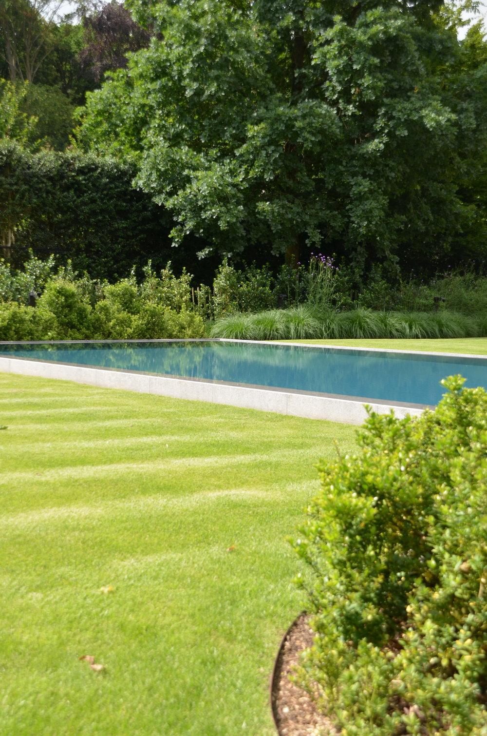 Myproject | aanleg zwembad.JPG