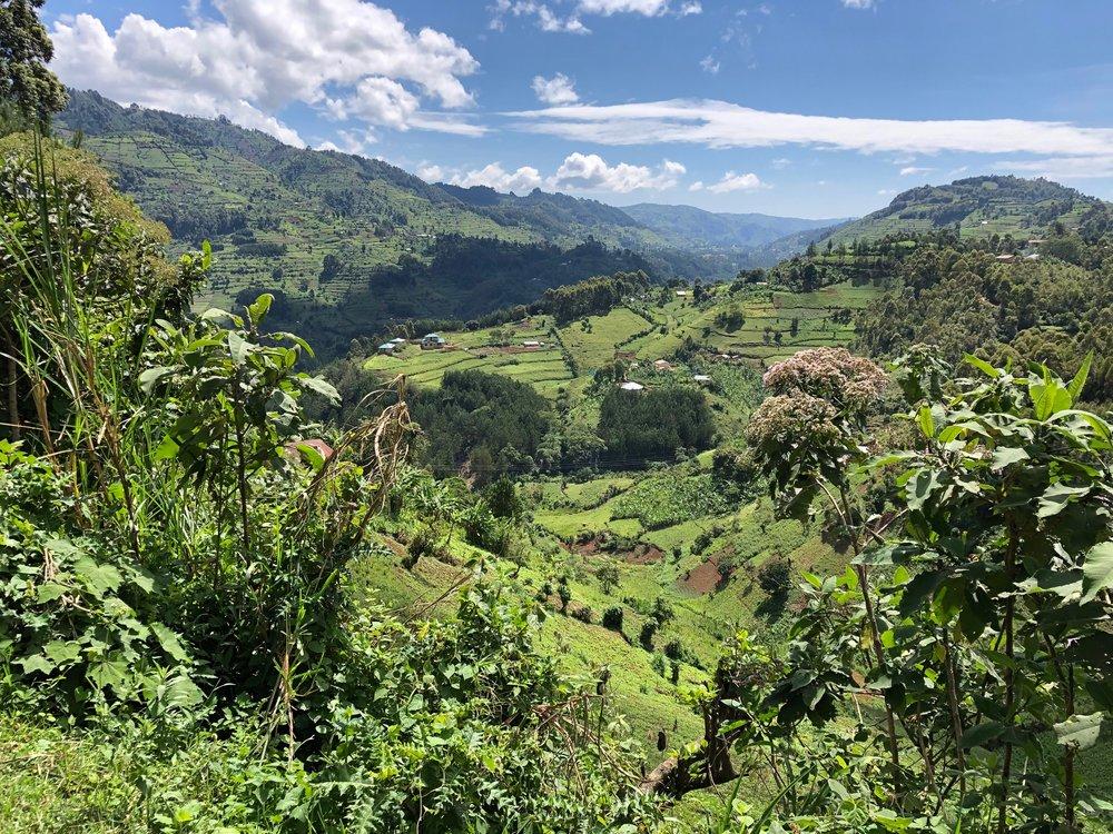 Uganda Scenery.jpeg