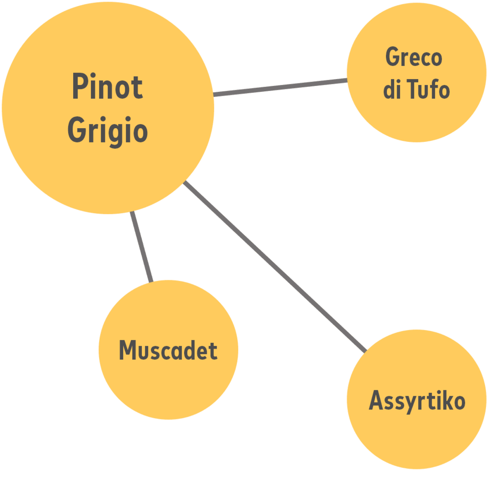 """- If you like Pinot Grigio, you'll also like...Greco di Tufo (from Southern Italy)Assyrtiko (from Greece)Muscadet, better if labelled """"sur lie"""" (from France)"""
