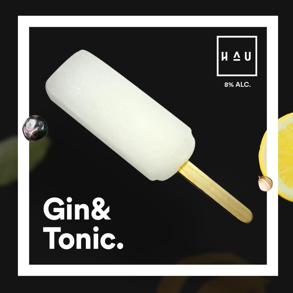 2018-HAU-GT-product-shot-2.png