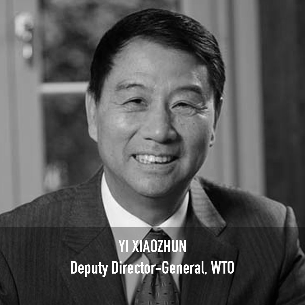 Yi Xiaozhun - Deputy Director-General, WTO