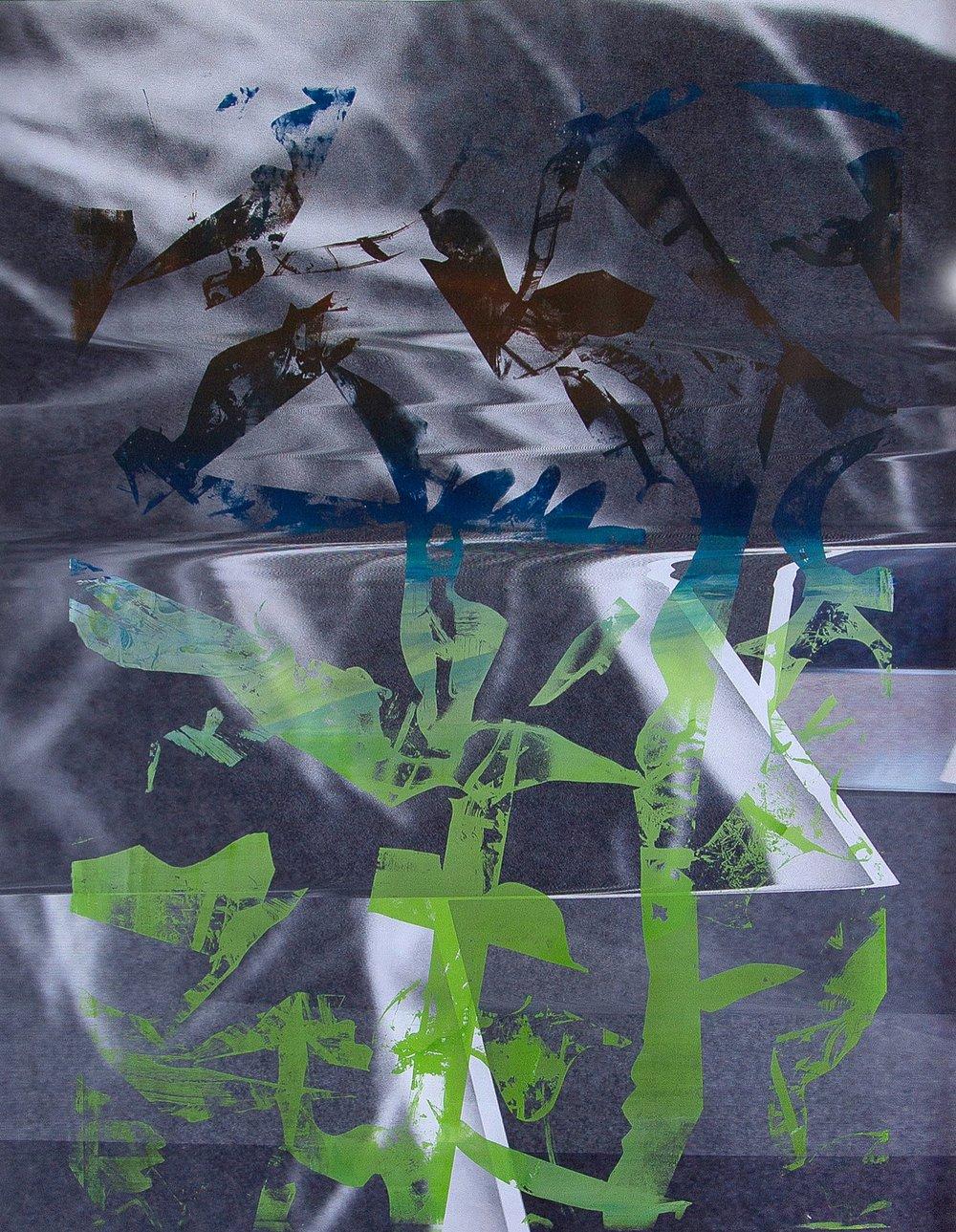 Screenprinted acrylic on epson print/146x102cm 2017