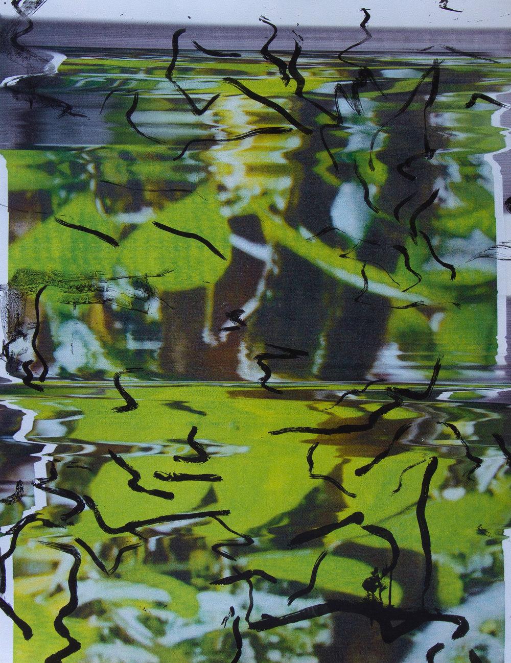Screenprinted acrylic on epson print/102x87cm 2017