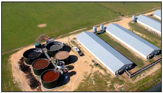 Super soils system on a farm in North Carolina. Source: Vanotti, USDA.