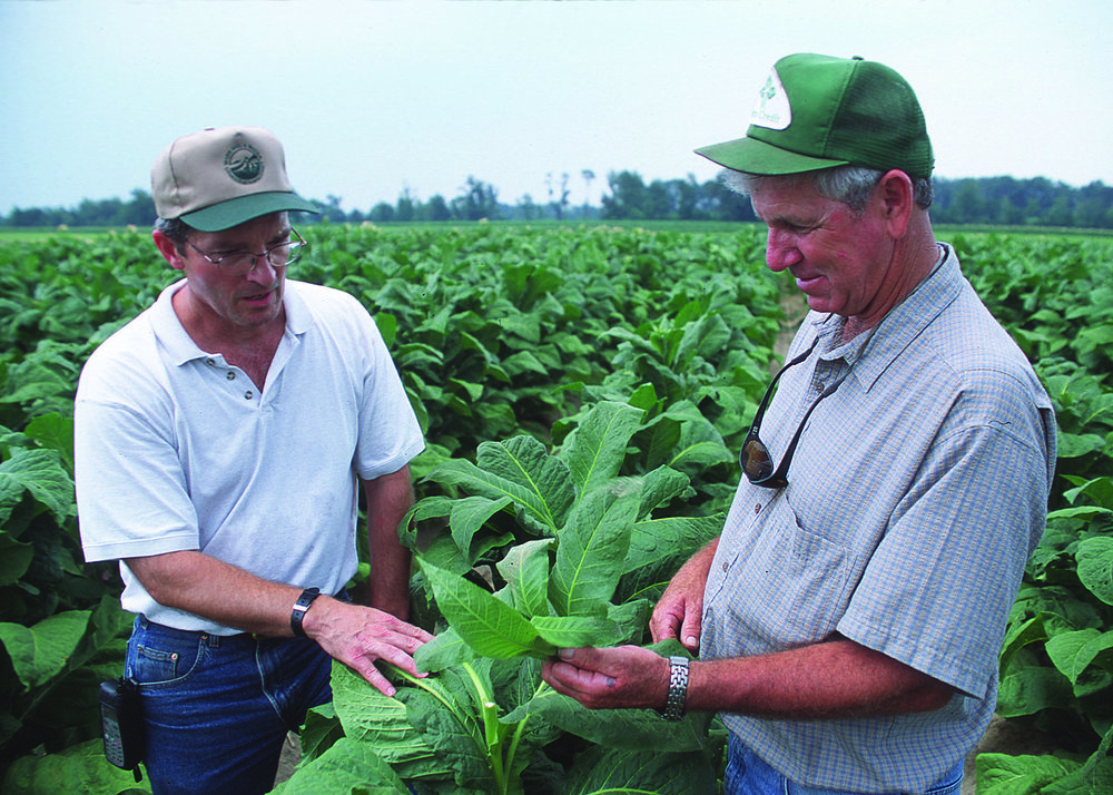 Local District Conservationist discussed conservation with this tobacco farmer in North Carolina.  Photo by  Bob Nichols, USDA Natural Resources Conservation Service , 2011.