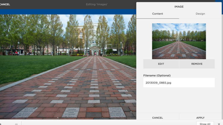 Learn how to add a photo to your web page. -
