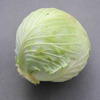 Cabbage (All types)