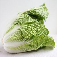 Chinese Cabbage (Napa)
