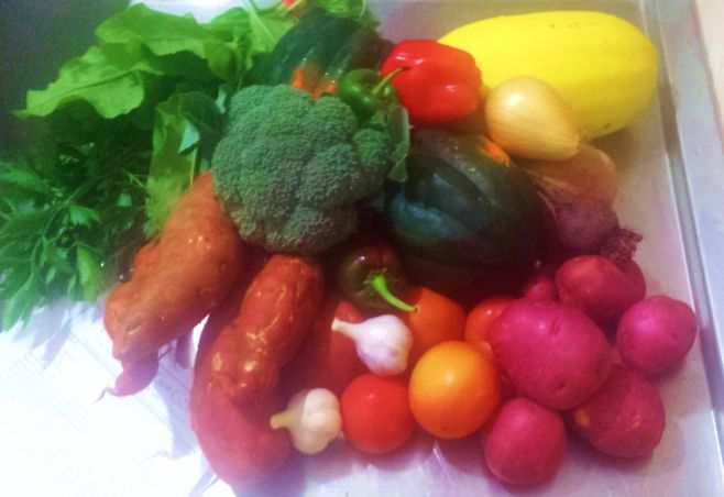 Summer veggies Sept..jpg