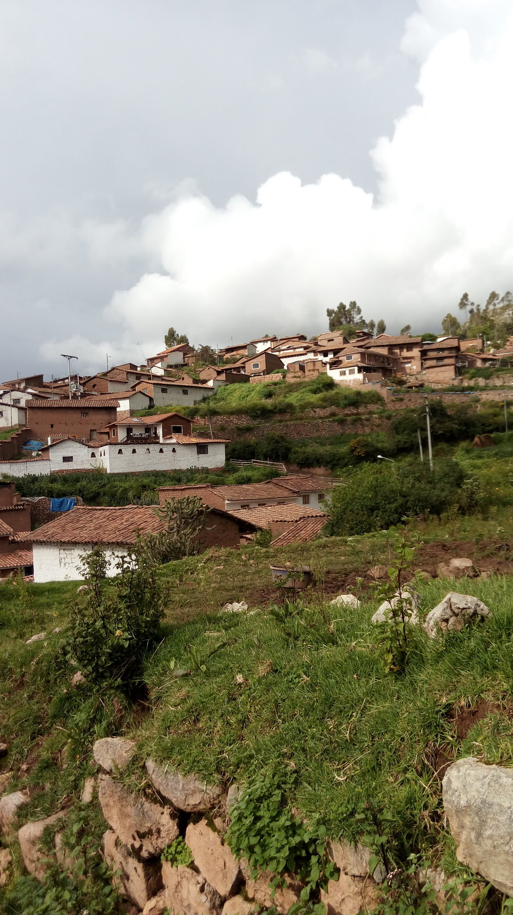 A view of the village.jpg