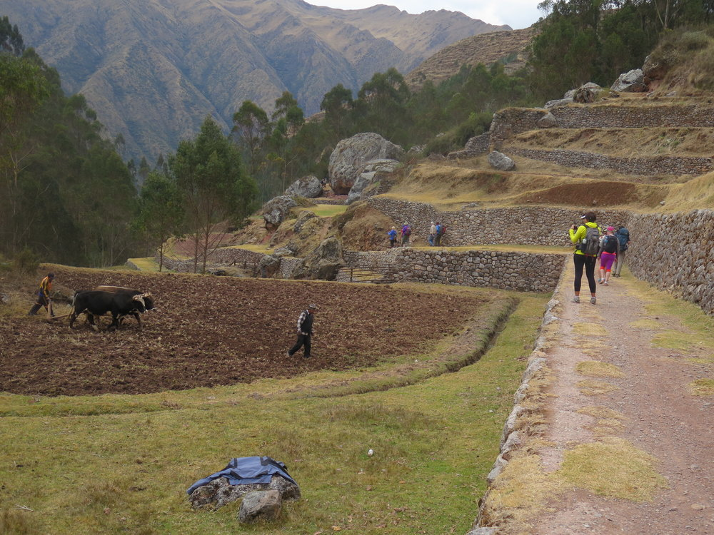 Trail in the morining down past the inca terraces at Chinchero.JPG