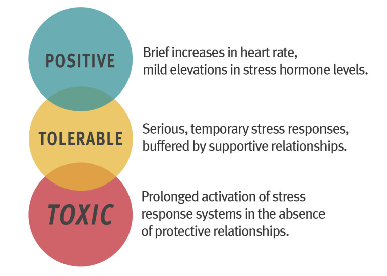 Three-Types-of-Stress-768x549.jpg