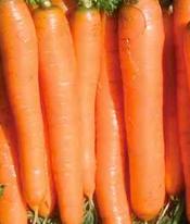yaya-carrot