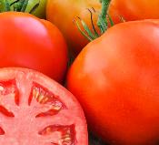 tomato_big beef